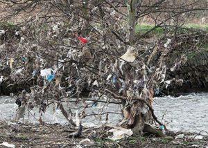 LEDINA LOGA/ Qeset plastike, çfarë po ndodh me tregun dhe ricikluesit